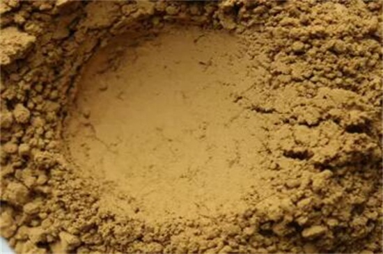 菊花粉的功效与作用及禁忌